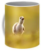 Dream Duckie _egyptian Gosling Coffee Mug