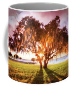 Dreaming At Sunrise Coffee Mug