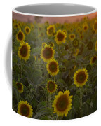 Dreaming In Sunflowers Coffee Mug