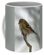 Dreaming Of Spring - American Goldfinch Coffee Mug