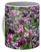 Dreaming Of Tulips Coffee Mug