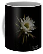 Dreams Of Night Coffee Mug
