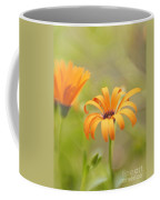 Dreams Of Orange Symphony In Spring 2 Coffee Mug