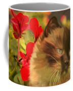 Dreamy Cat With Geranium 2015 Coffee Mug