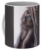 Dreamy  Listowel Fair Coffee Mug