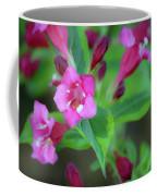 Dreamy Wigelia Coffee Mug