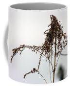 Dried Flower Coffee Mug