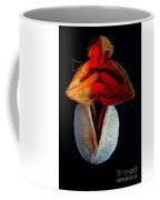 Composition With Dried Flowers Red Hat. Coffee Mug