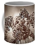 Dried Hydrangeas Coffee Mug