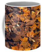 Dried Leaves Coffee Mug