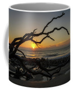 Driftwood Dawn Coffee Mug