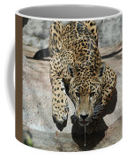 Drinking Jaguar Coffee Mug