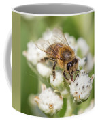 Drinking Up The Nectar, Apis Mellifera Coffee Mug