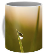Droplet On The Blade Of Grass A Coffee Mug