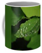 Droplets On A Leaf  Coffee Mug