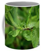 Droplets On Spring Leaves Coffee Mug