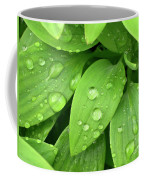 Drops On Leaves Coffee Mug by Carlos Caetano