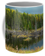 Drowned Trees Coffee Mug