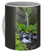 Dry Creek Falls Coffee Mug