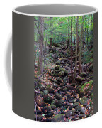 Dry River Bed- Autumn Coffee Mug