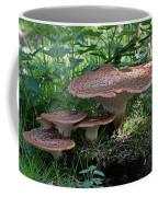 Dryad's Saddle Fungus Coffee Mug