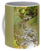 Drying Up River 3 Coffee Mug