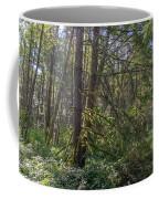 Dsc_0012 Web Coffee Mug