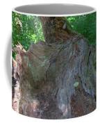 Dsc_0033 Web Coffee Mug