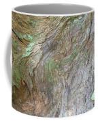 Dsc_0034 Web Coffee Mug