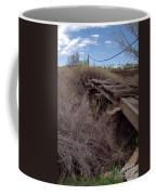 Dsc02077e Coffee Mug