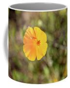 Dsc_1515 Web Coffee Mug