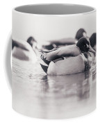 Duck On Water Coffee Mug
