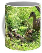 Ducklings Through The Ferns Coffee Mug