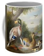 Ducks In A River Landscape Coffee Mug by Jakob Bogdany
