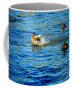 Ducks In Water Coffee Mug