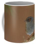 Dunnock Coffee Mug
