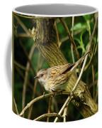 Dunnock In A Hedgerow Coffee Mug
