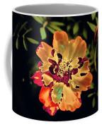 Durango Outback Mix 02 - Photopower 3200 Coffee Mug