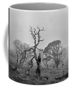 Dusk, Crannoch Woods Coffee Mug