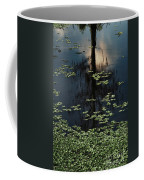 Dusk In The Swamp Coffee Mug