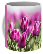 Dutch Tulips 2016 - Part One Coffee Mug