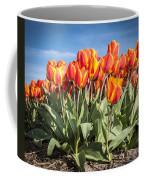 Dutch Tulips Second Shoot Of 2015 Part 3 Coffee Mug