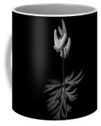 Dutchman's Breeches Black And White Coffee Mug