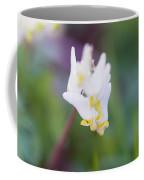 Dutchman's Breeches 2 Coffee Mug