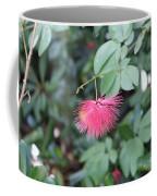 Dwarf Powder Puff Flower Coffee Mug