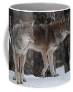 Dynamic Duo Coffee Mug