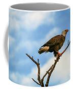 Eagle And Blue Sky Coffee Mug