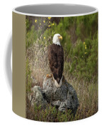 Eagle Eye  Coffee Mug