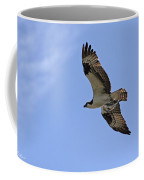 Eagle Lakes Park - Osprey In Flight With Sea Fish Meal Coffee Mug