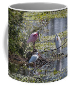 Eagle Lakes Park - Roseate Spoonbill And Friends, Socializing Coffee Mug